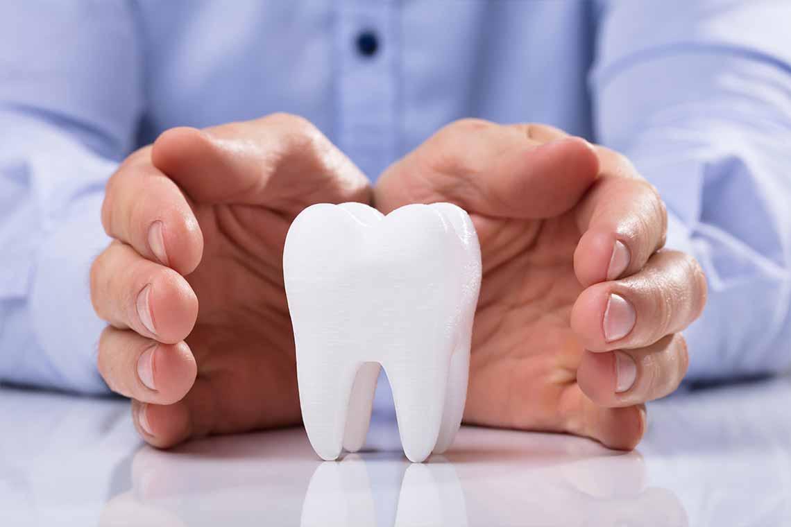 Teeth or Dental Sample in Desk